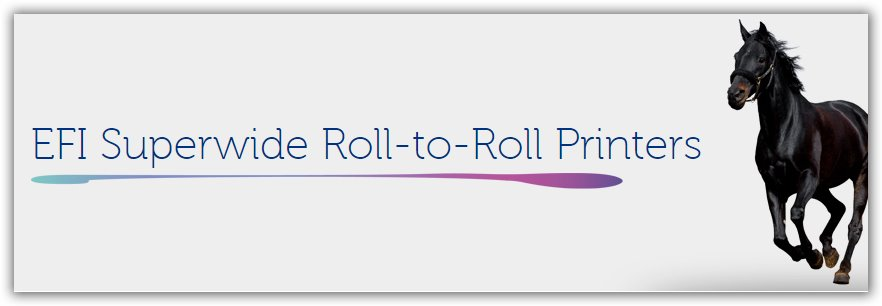 Efi Roll to Roll